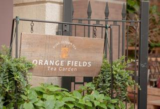 Orange Fields Tea Garden